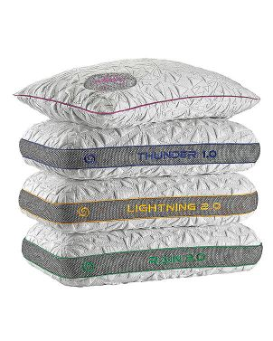 BEDGEAR Storm Performance Pillow