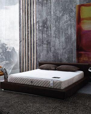 ที่นอน Omazz รุ่น Fermiss