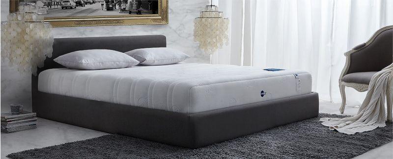 ที่นอน Omazz รุ่น Falcohn (S10)