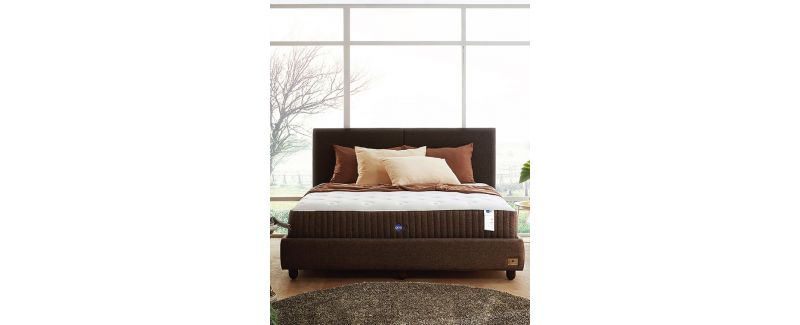 Omazz Mattress - Contempo